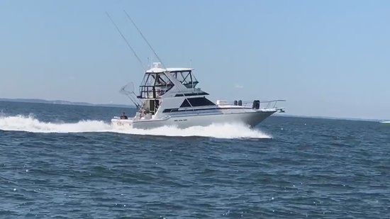 Old Saybrook, CT: Eden sportfish at cruise
