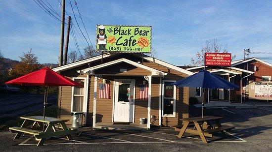 Image result for lil black bear cafe