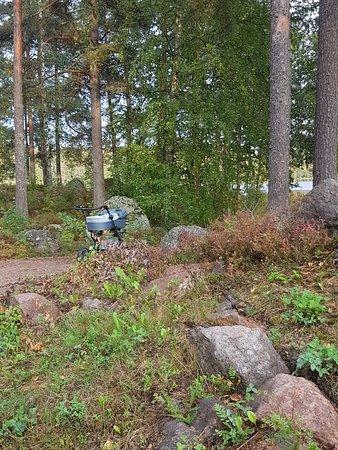 Siltakyla, Finlandia: 20180909_180801_large.jpg