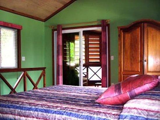 Bananarama Dive & Beach Resort: Guest room