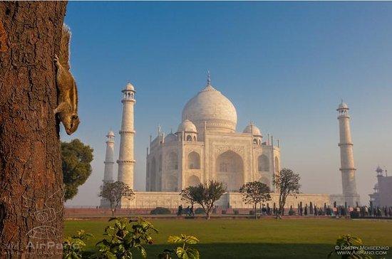 One Day Taj Mahal y Agra Tour en tren...