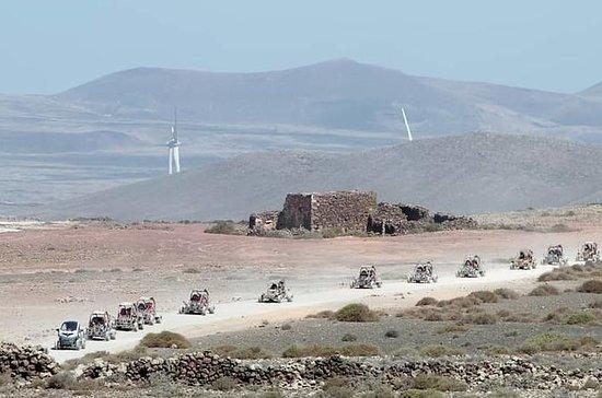 Corralejo dune buggies tur siden 2008...