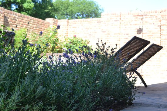 Shadoxhurst, UK: Relax in the walled garden