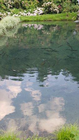 Chiesina-Farne, Italië: trote