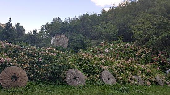 Chiesina-Farne, Italië: macine del vecchio mulino