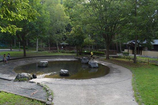Sakana Park