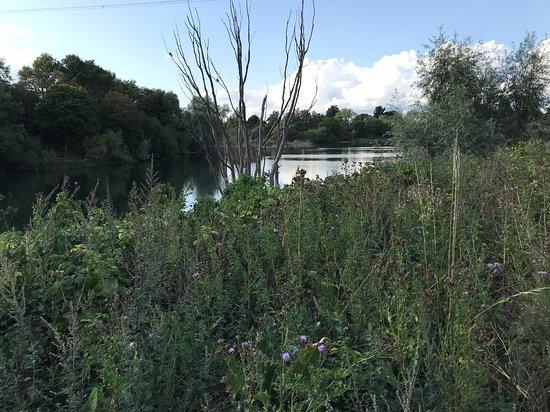 Leighton Buzzard, UK: Tiddenfoot lake