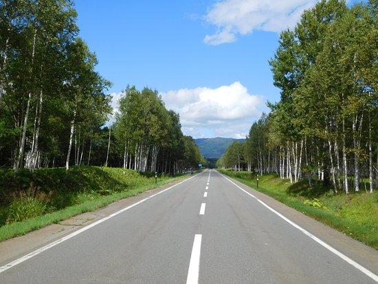 Kamishihoro-cho, Japan: 三股から三国峠へ