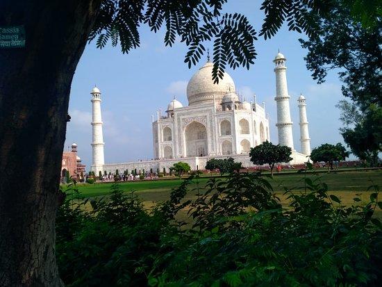 Taj Mahal Tour Guide Family Group: It is beautiful view of Taj mahal from garden