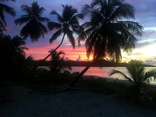 Ментавайские острова, Индонезия: alba