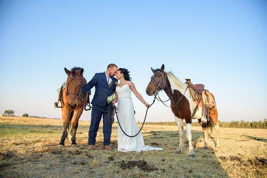 Diamond X Cowboy Ranch
