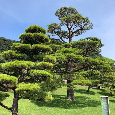 Sengan-en Garden (Kagoshima) - 2018 All You Need to Know Before You on