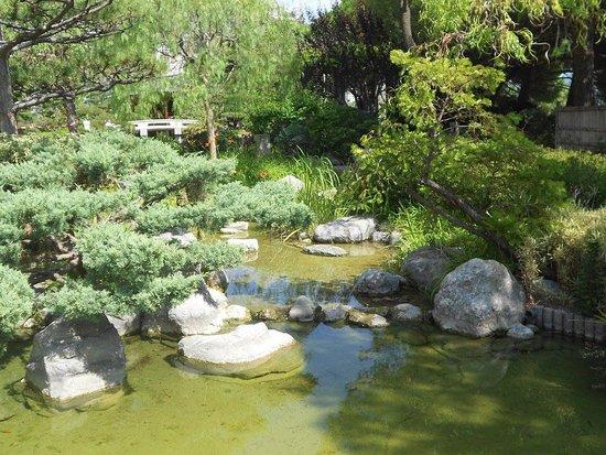 Jardin Japonais Picture Of Jardin Exotique De Monaco La Condamine