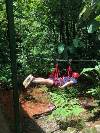 Canopy Safari صورة فوتوغرافية