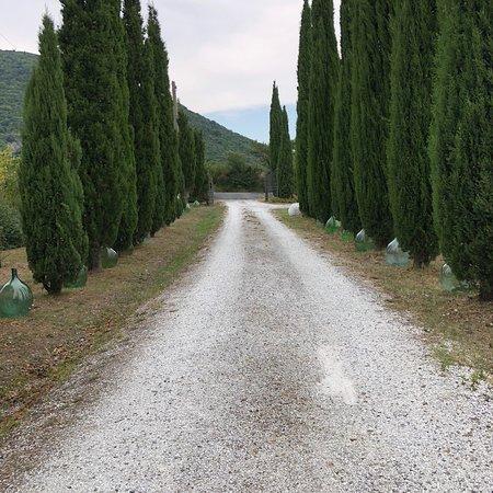 Chianni, Italie : photo5.jpg