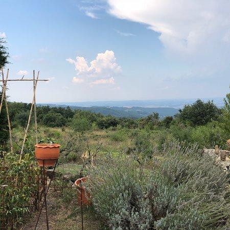 Chianni, Italie : photo9.jpg