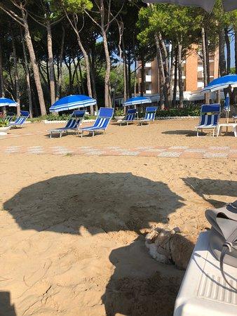 Hotel Beau Rivage Pineta Foto