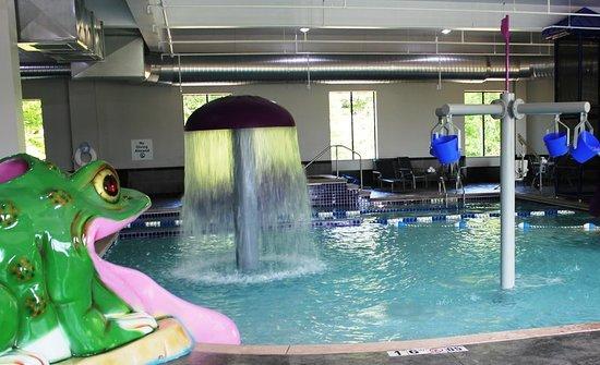 Holiday Inn Express & Suites Columbus-Polaris Parkway: Pool