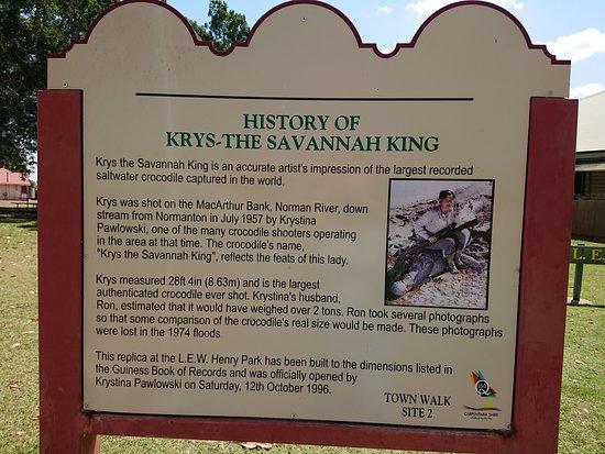 Normanton, Australia: The story of Krys