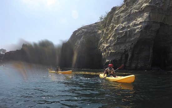 La Jolla Sea Cave Kayaks - 2019 All You Need to Know BEFORE