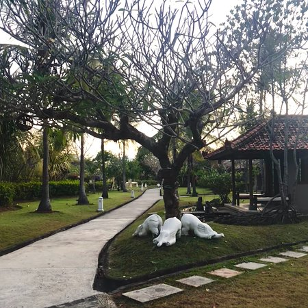 Mimpi Resort Menjangan: photo5.jpg