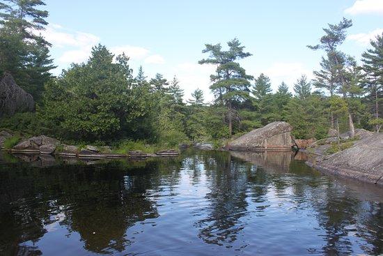 Algonquin Provincial Park, Καναδάς: At High Falls