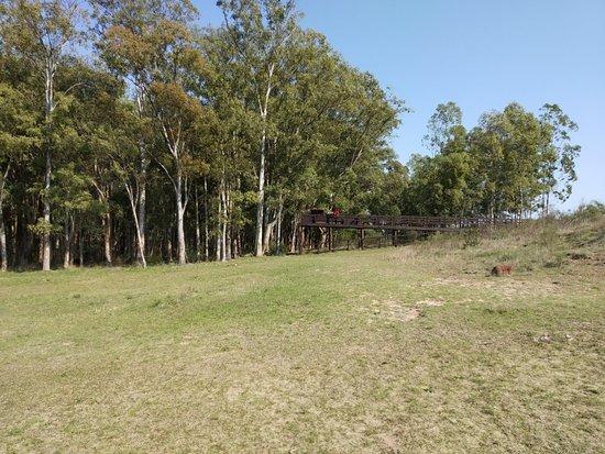 Gruta del Palacio, Uruguay: IMG_20180909_103500_large.jpg