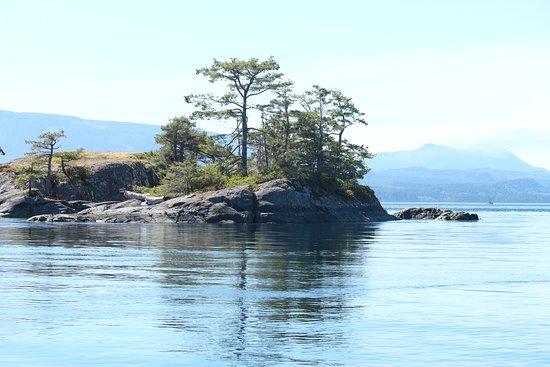 North Island Tours: Beautiful islands