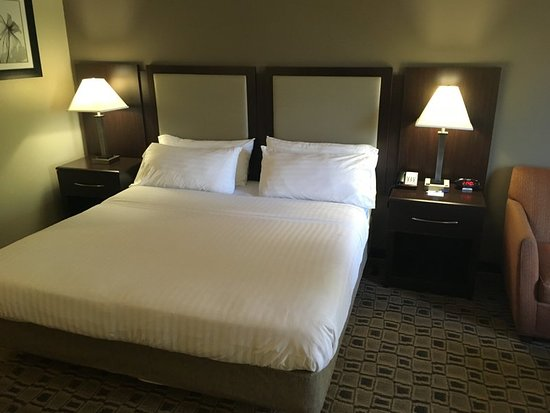 Holiday Inn Express Hotels And Suites Albermarle: Guest room