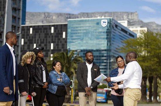 Visite privée du Cape Town et de la...