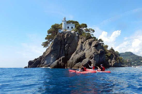 Short Kayak Tour to Portofino (1h30)