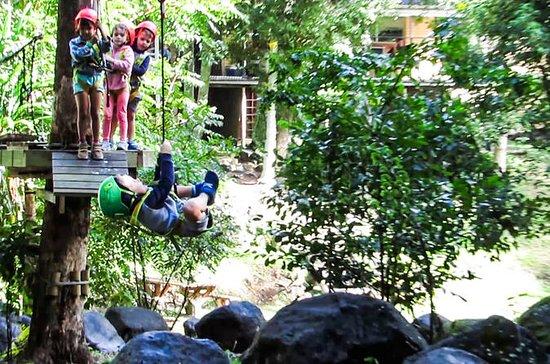 TreeTop Challenge Juniors