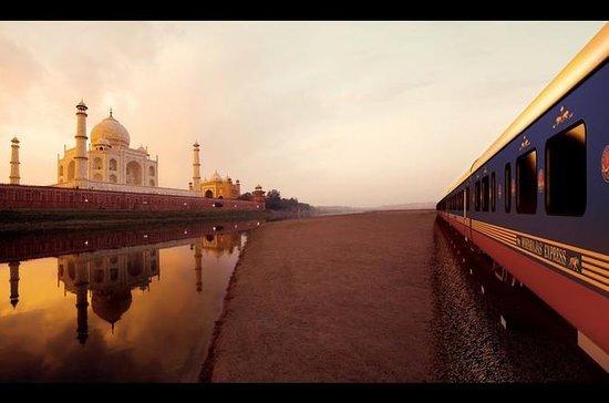Samme dag Agra tur fra Delhi med tog