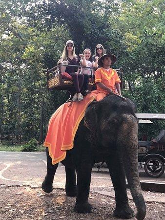 Dom Angkor Guide