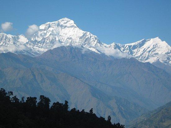 Trek Annapurna Mardi