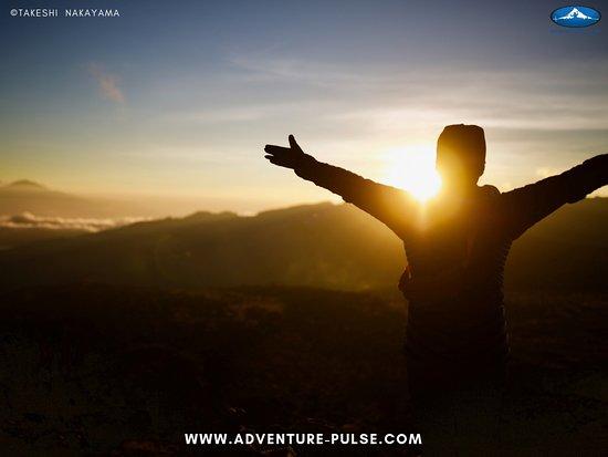 Adventure-Pulse