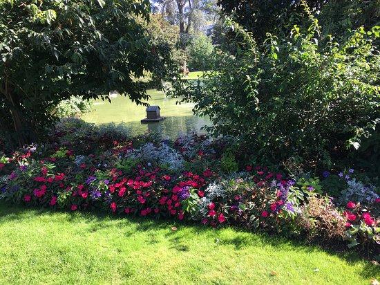 Jardin des Plantes: Parterre près du mini lac