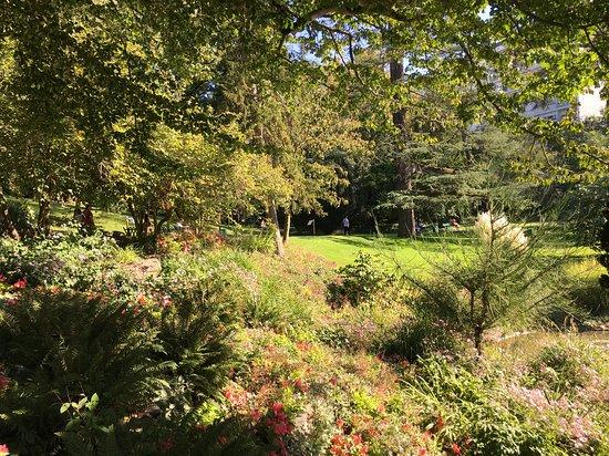 Jardin des Plantes: Couleurs de fin d'été