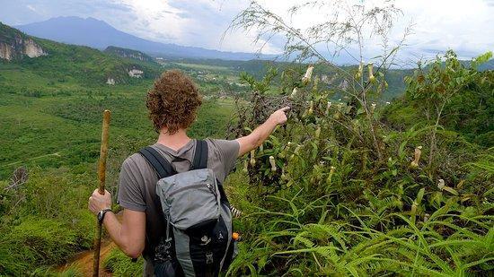 Harau, Indonesia: hiking with staff
