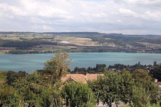 Foto Beinwil am See