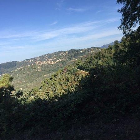 Sentiero n. 7b - Via delle Ginestre: photo4.jpg