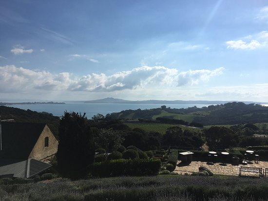 Waivino Wine Tours Picture