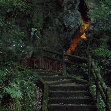 Hokubo Firefly Park