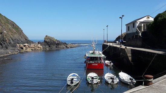 Coaña, España: Puerto de Ortiguera