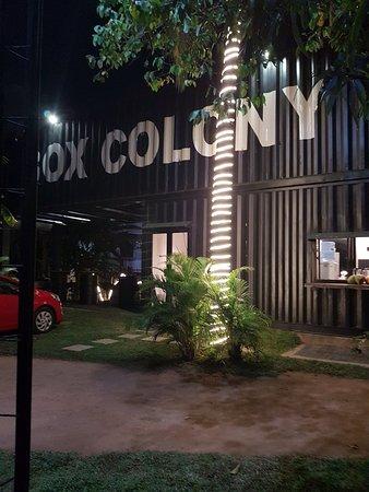 Pelawatta, Sri Lanka: Box Colony