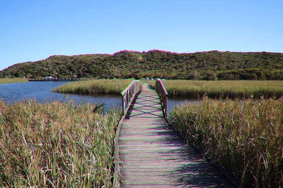 ‪Princetown Wetlands Boardwalk‬