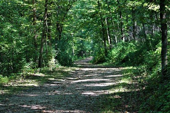 Hastings, MN: Hiking Club Trail