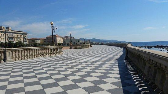 Venezia Nuova: 20180911_141713_large.jpg