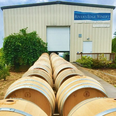 Elkton, OR: Barrels lined up behind the winery for cleaning