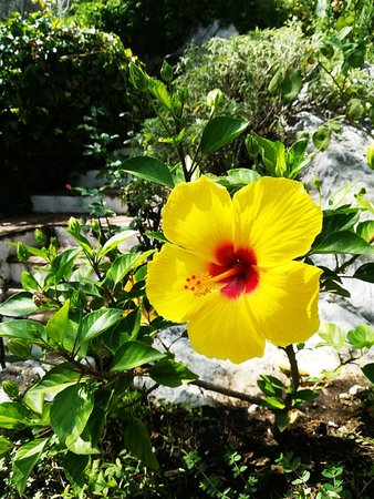 Montejaque, Spain: IMG_20180903_145512_large.jpg
